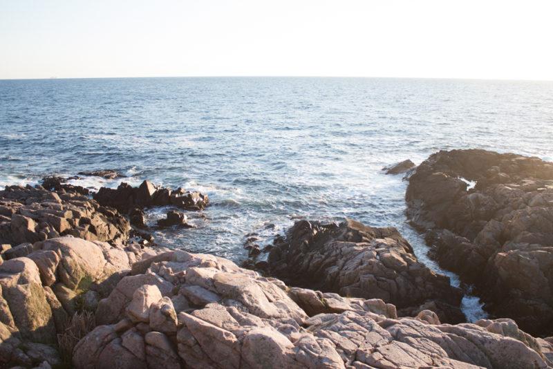 Karga klippor Kullen Kullabergs halvö