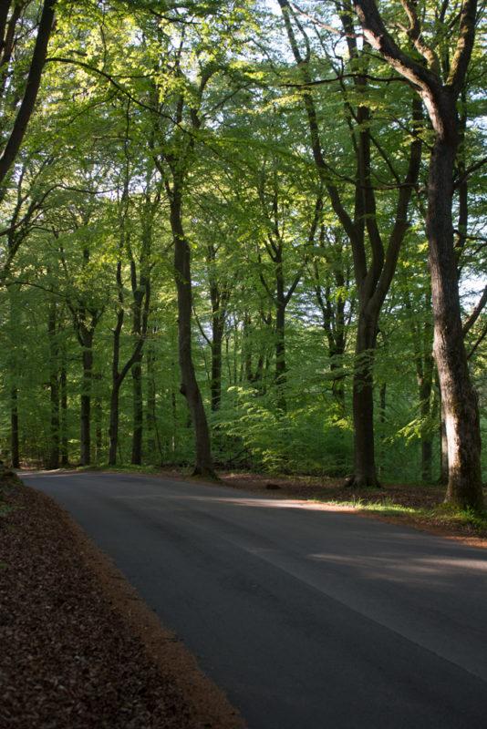 Kullbergs naturreservat
