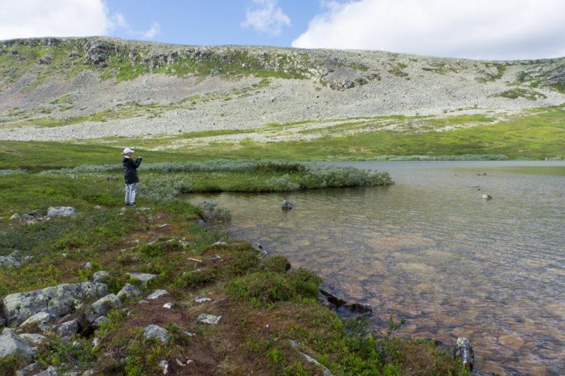 Nipfjällets naturreservat